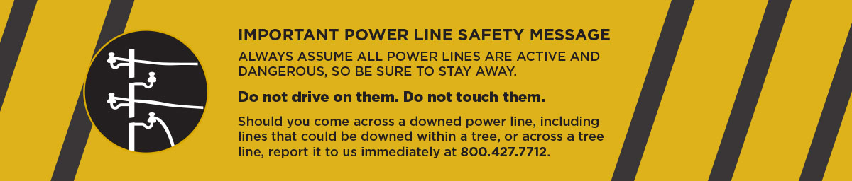 IMPORTANT POWER LINE SAFETY MESSAGE ALWAYS ASSUME ALL POWER LINES ARE ACTIVE AND DANGEROUS, SO BE SURE TO STAY AWAY. Do not drive on them. Do not touch them.  Should you come across a downed power line, including lines that could be downed within a tree, or across a tree line, report it to us immediately at 800.427.7712.